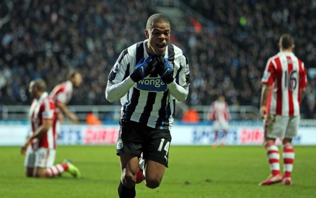 Loic Remy Newcastle United