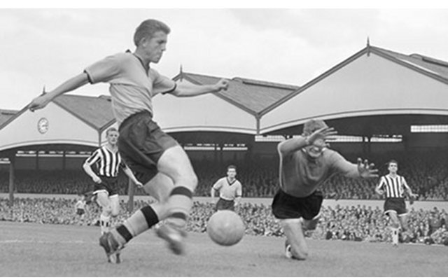 Wolves 1958