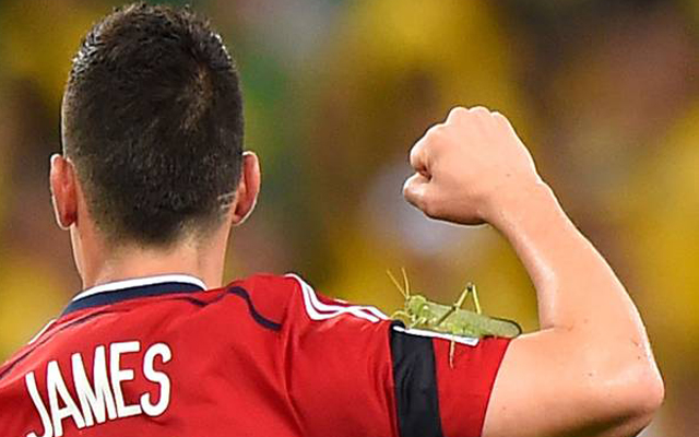 James and the Giant Grasshopper