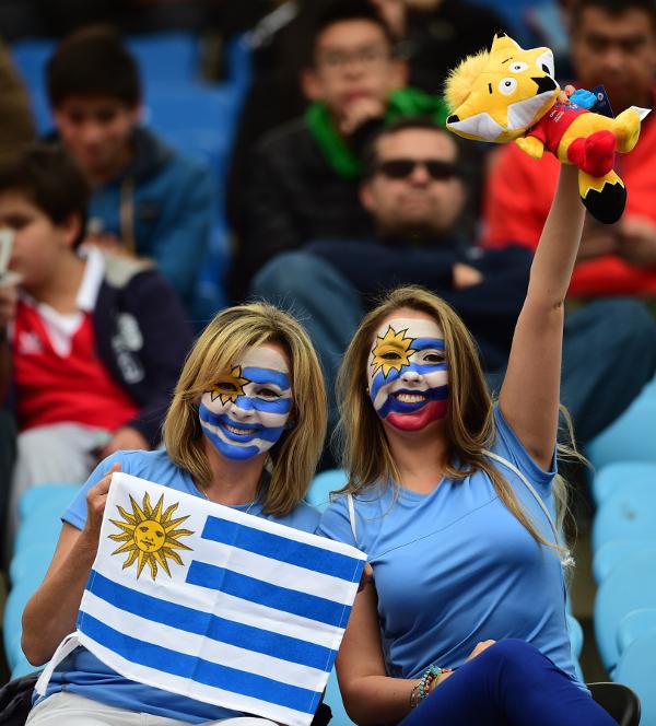Copa America Fan 1