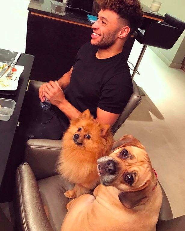 Perrie Edwards posts Alex Oxlade-Chamberlain dog photo on Instagram