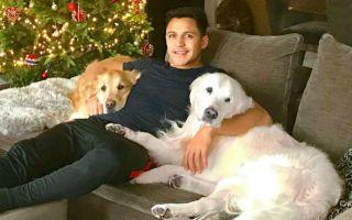 Man Utd S Alexis Sanchez Should Listen To Chris Smalling Dog Tweet